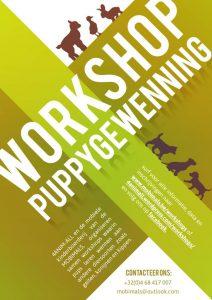 workshop puppygewenning 4animall